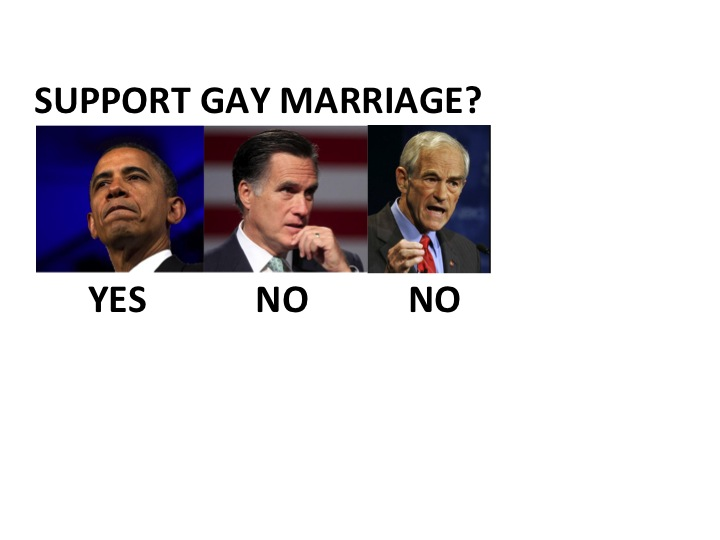 2006 constitutional change regarding gay marriages